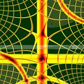WKFR9900182-Netz.jpg