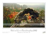 00-Bildkalender-Nebel-und-Eis-im-Elbsandsteingebirge-2012-Zschand.jpg