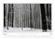 11-November-Traumlandschaft-Elbsandstein-2013-Winterberg.jpg
